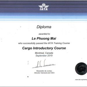 IATA Air Cargo