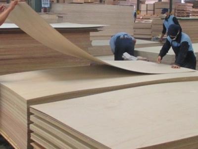 US ends Vietnam timber probe, no tariff